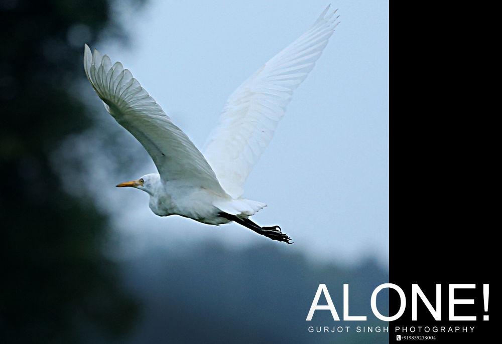 ALONE by gurjotsingh180