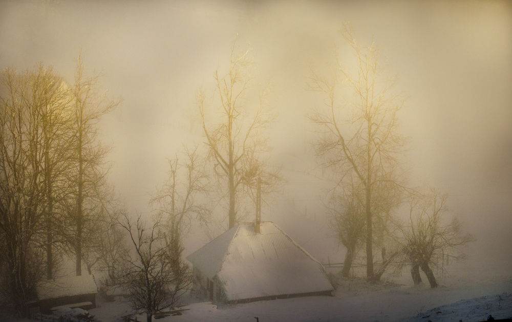 Lost In Fog by marius tapirluie