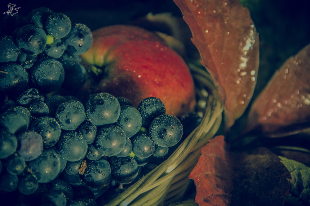 Photo in Food #ypa2013 #autumn #apple #grapes #leaf