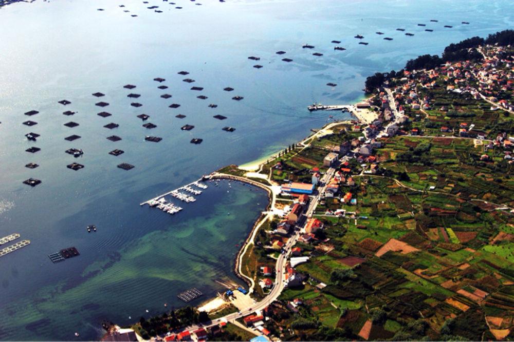 Bateasen la ría de Vigo. Moaña. Pontevedra.Galicia by xosebangueses