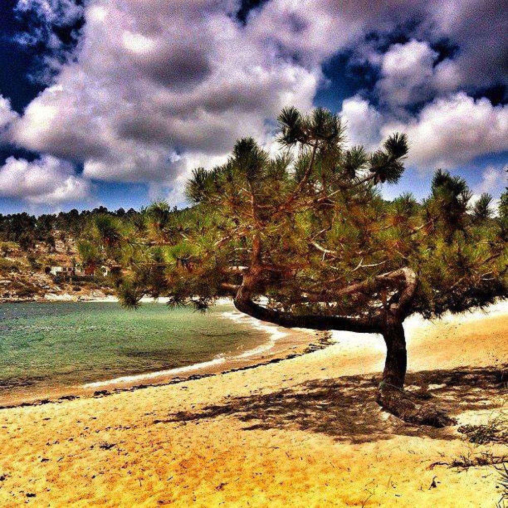 Photo in Nature #galicia