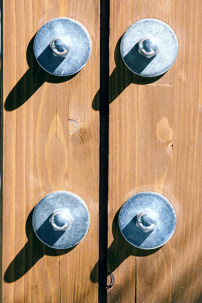 DOOR by guidozong