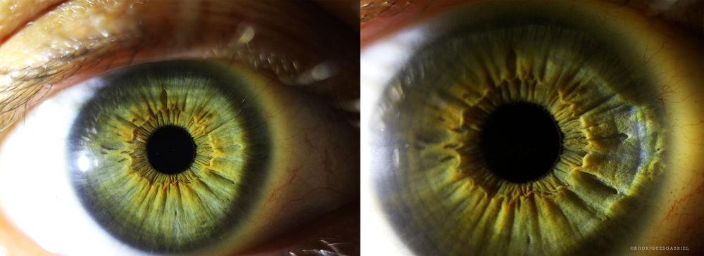 Photo in Macro #eye #eyes #macro #macrophotography #macrolens #close #ypa2013