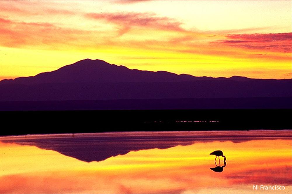 Atacama-CHILE by NiFrancisco