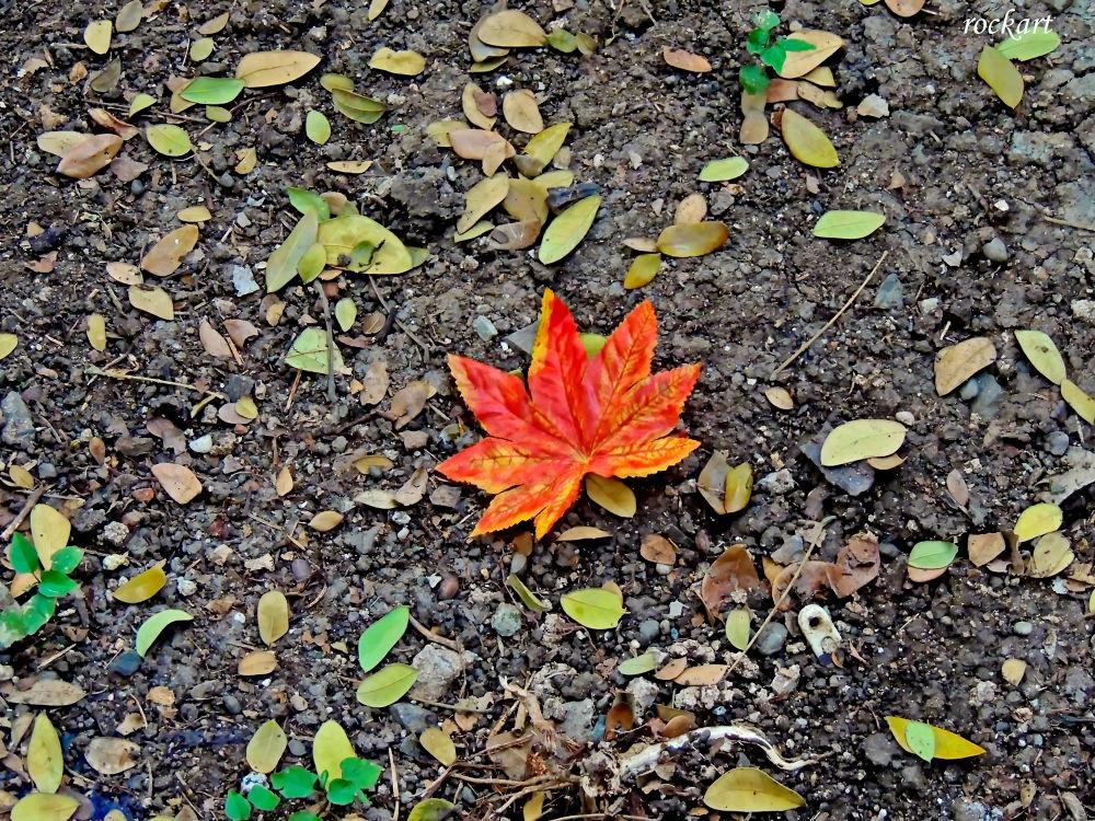 Leaf-1 by rockart
