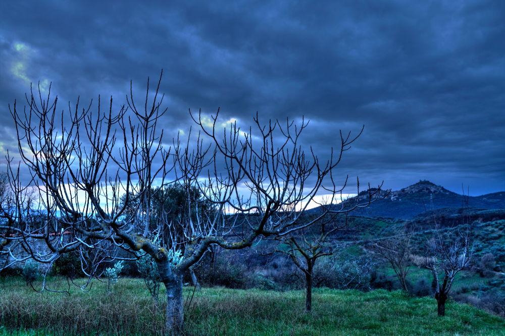 Dark Landscape by abbddella
