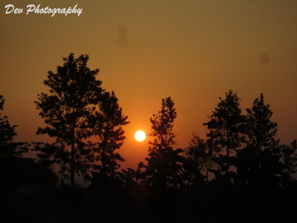 Sun Rise by DevRane