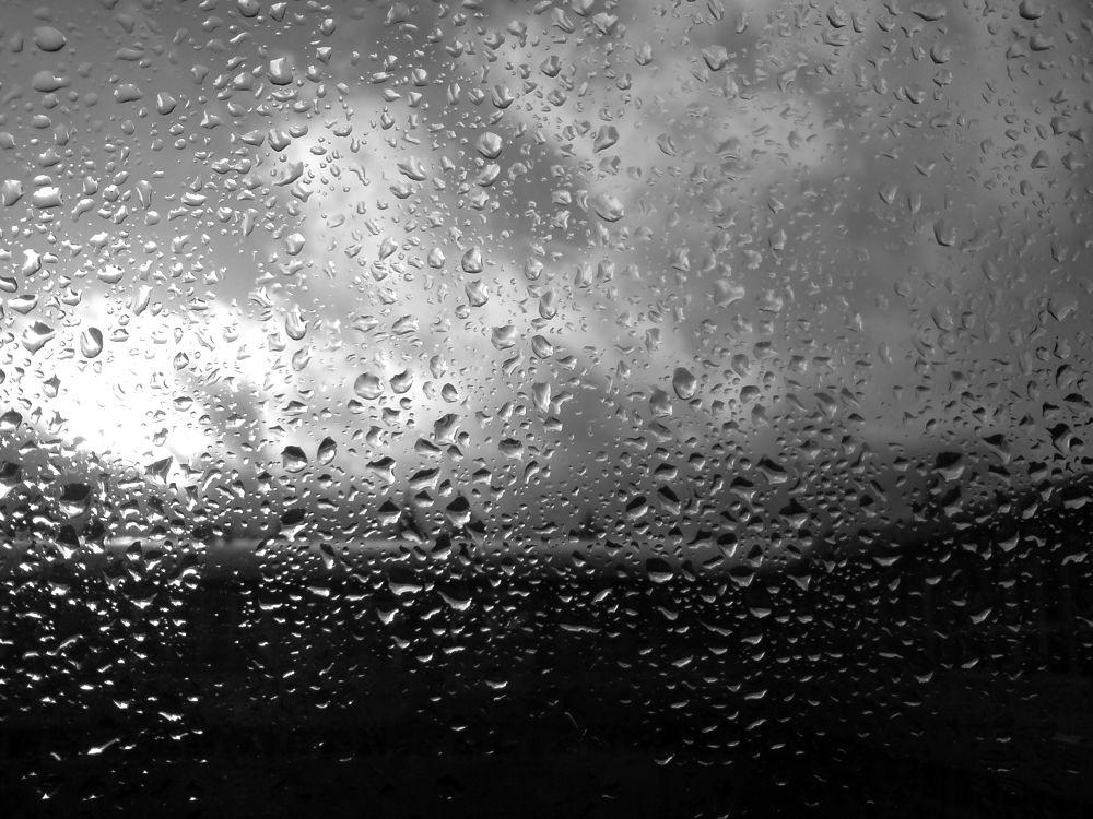 rain by Belladonna Lullaby