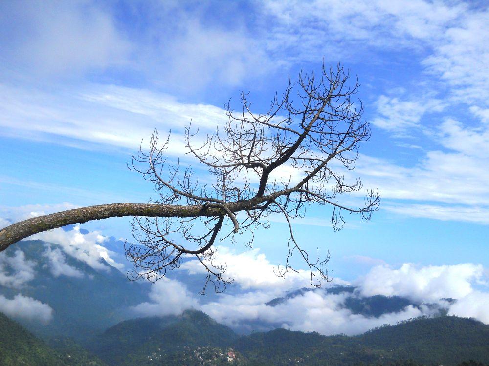 Above the Horizon. . . . by SHISHIR KUMAR SINGH