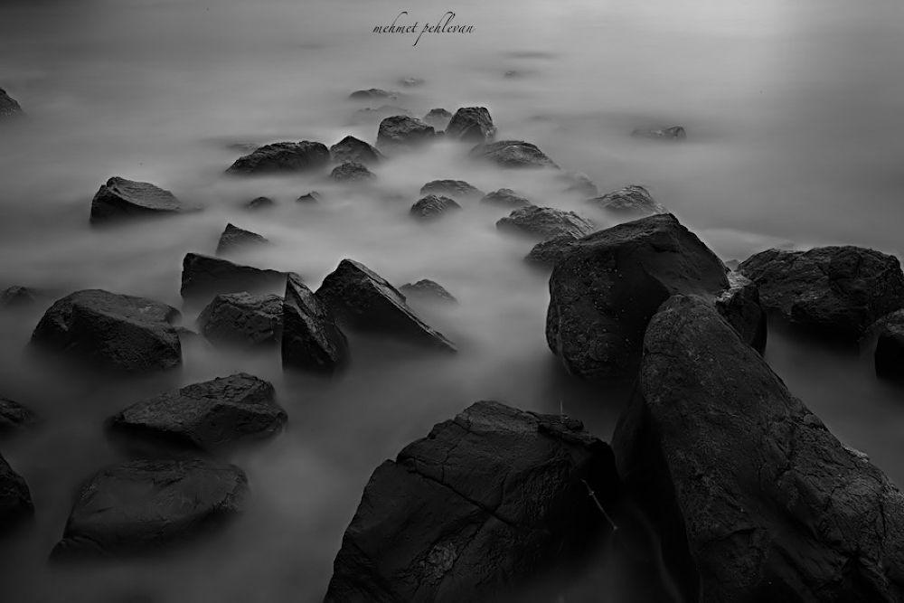 _MG_3101.jpg by berlo