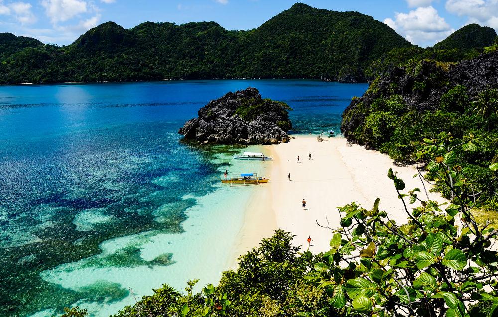 Survivor Island by Allan Borebor
