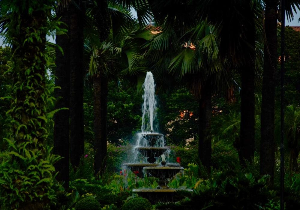 The Garden by Allan Borebor