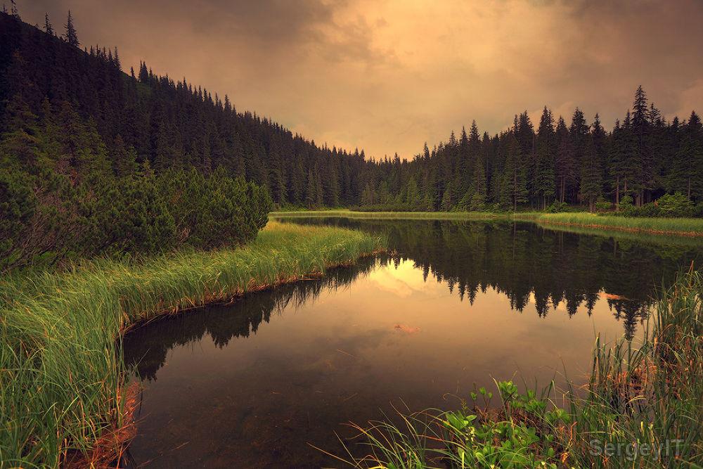 Photo in Random #carpathians #lake #trees #water #reflection #nature #ypa2013