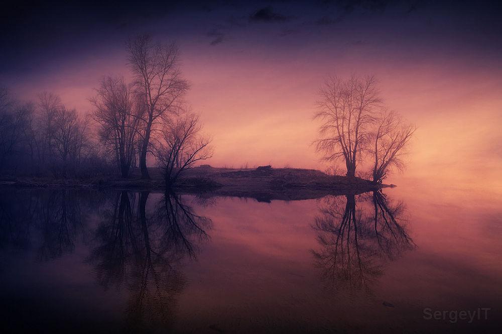 trees near a foggy river by SergeyIT