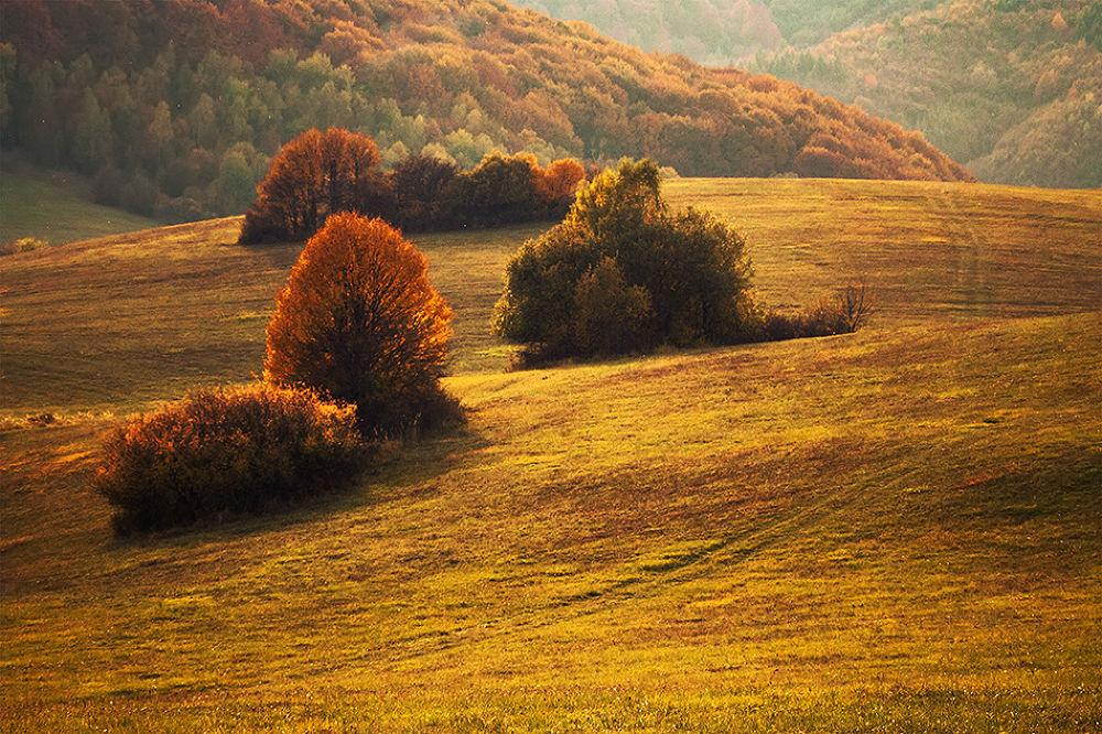 Autumn Colors by Martin Smolak
