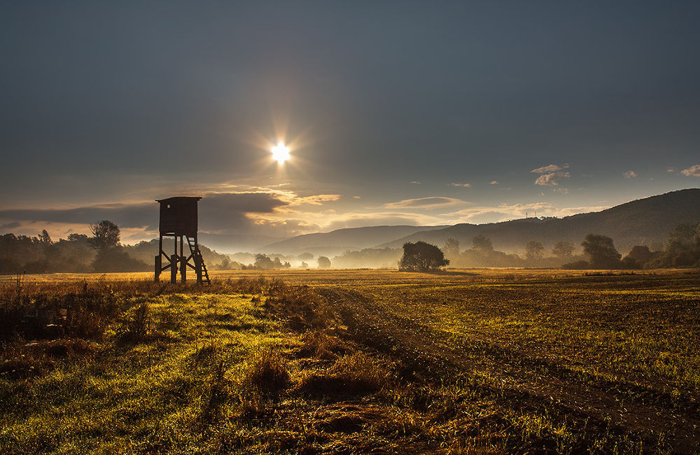 Photo in Random #ypa2013 #hunting tower #autumn #fall #haze #field #landscape #morning #morninf view #outdoor #sunrise