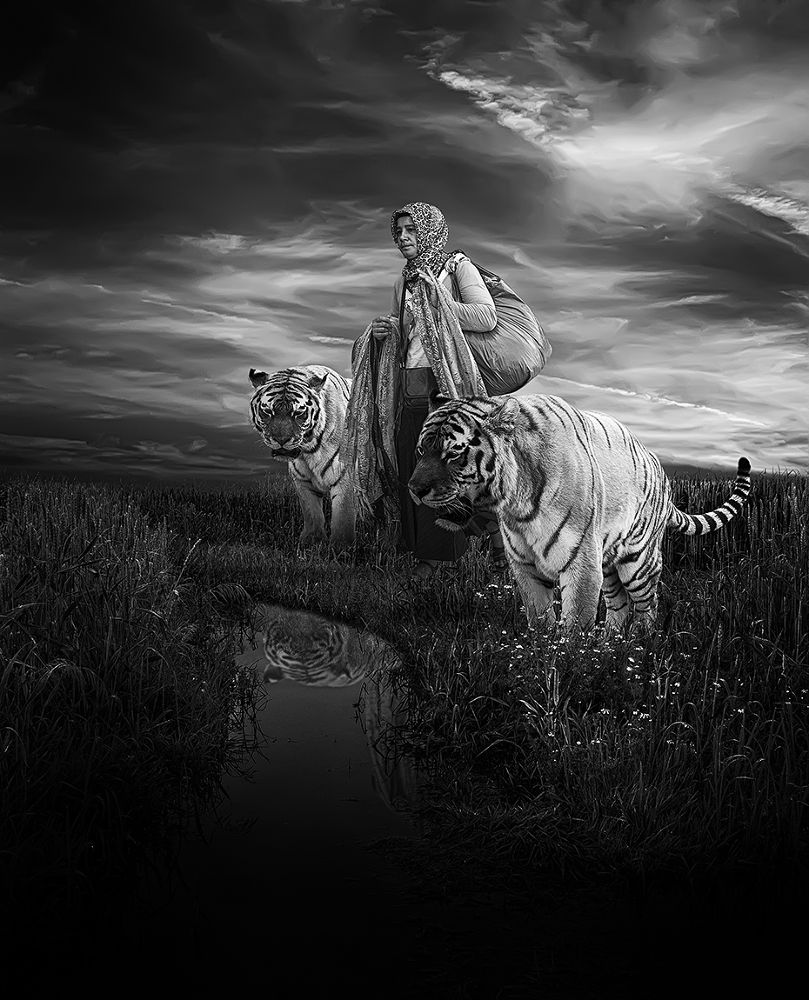 Photo in Fine Art #ypa2013 #stray #tramp #black and white #noit #tigers #old woman #stuff #clothes #dealer #shopkeeper #field #stream #dark