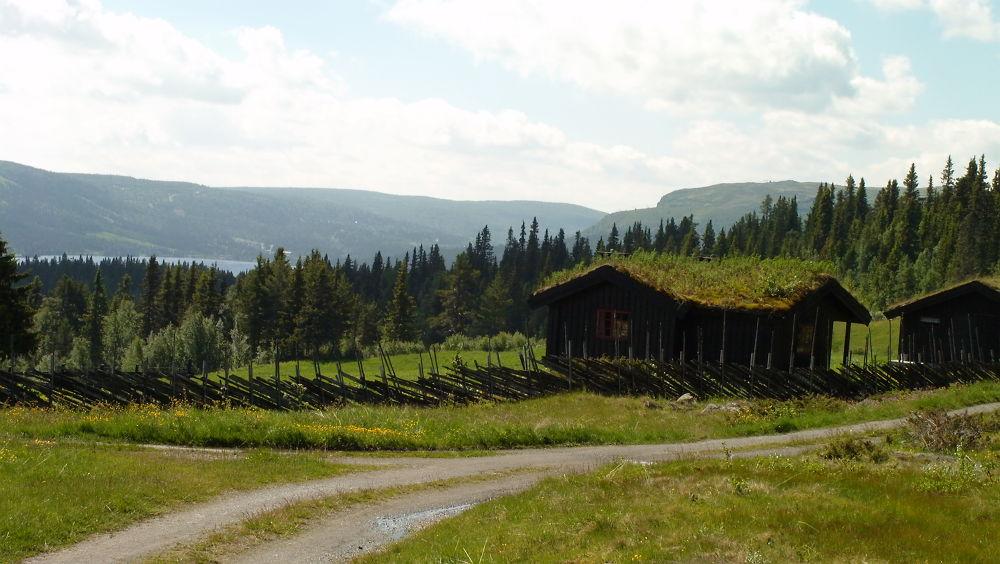 Photo in Landscape #ypa2013 #norway #norwegen #hütte #shack #grass #green #grün #mounten #landscape #trees #forrest #lake