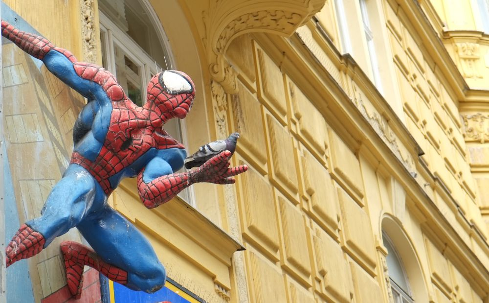 Photo in Film #ypa2013 #spider man #vienna #piggeon #super hero #comic #marvel