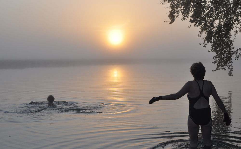 Early morning swim by Tony Steele