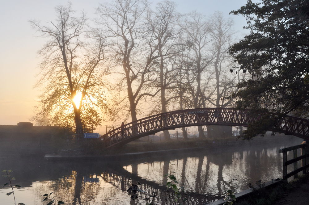 Morning fog by Tony Steele