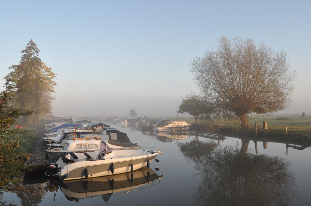 A misty Port Meadow marina,Oxford,UK by Tony Steele
