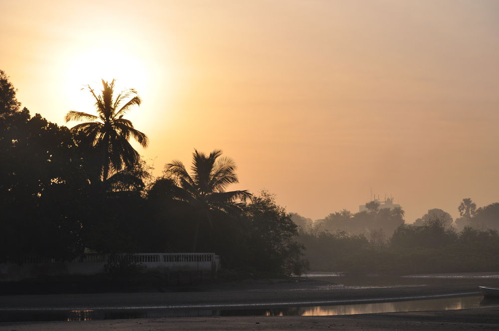 Gambian Dawn by Tony Steele