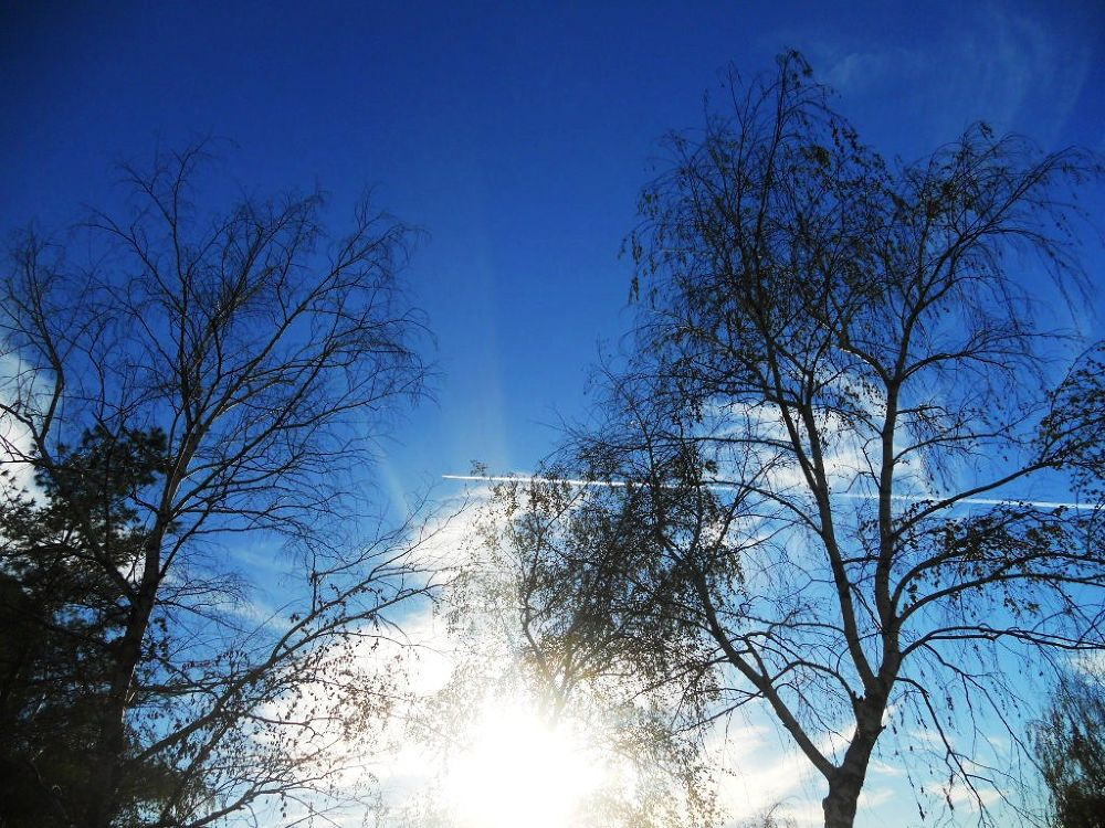 sun, plain, sky by SLADJANA VASIC