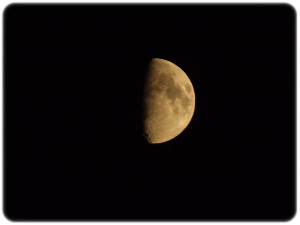 Luna by Loredan Pantos