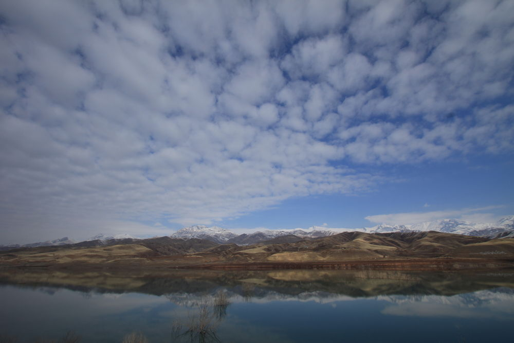 IMG_3628 by farzadkhajee