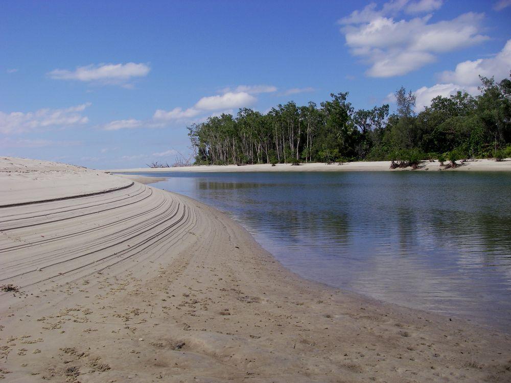 Cooper Creek Daintree National Park, Queensland by lyallnaylor