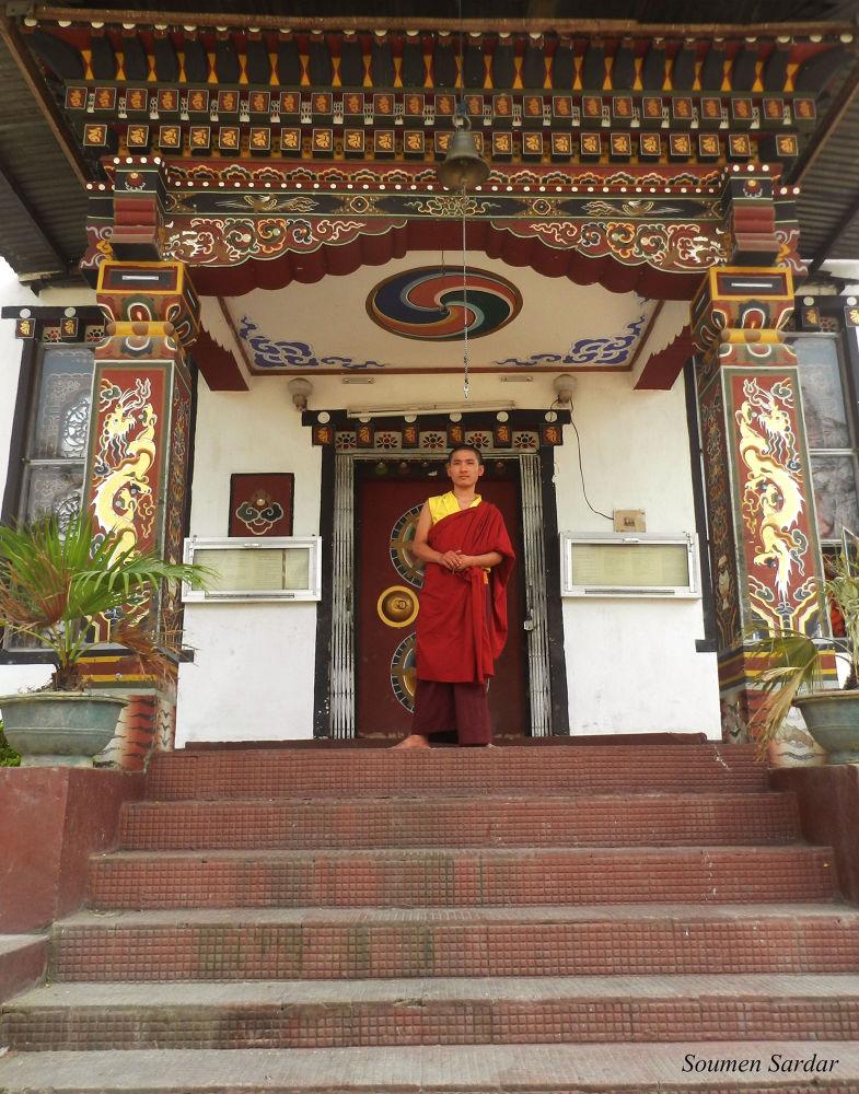 Lama by Bapon