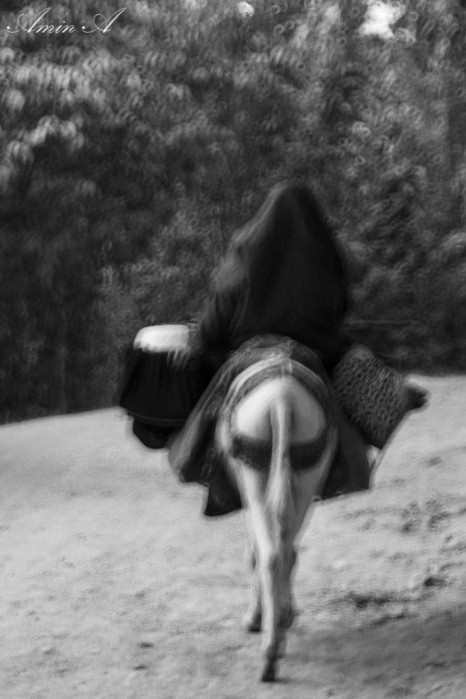 forgotten days by AminA