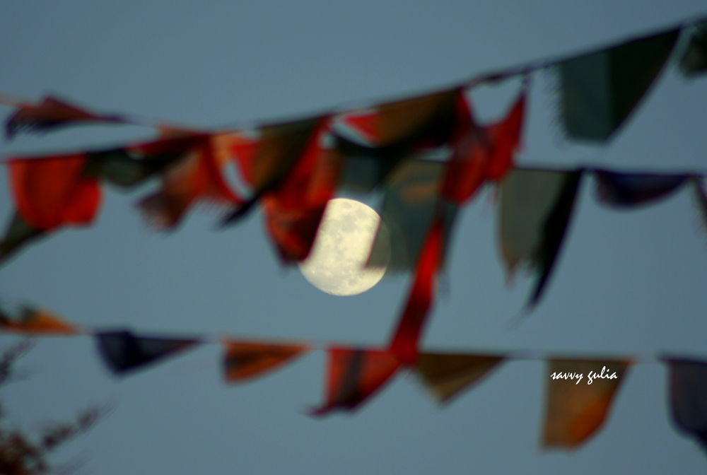 welcome the moon... by Savvy Gulia