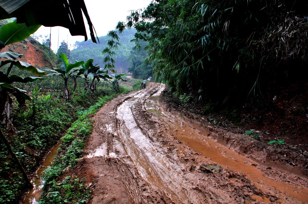 sau cơn mưa-after the rain by tuanminhtuan