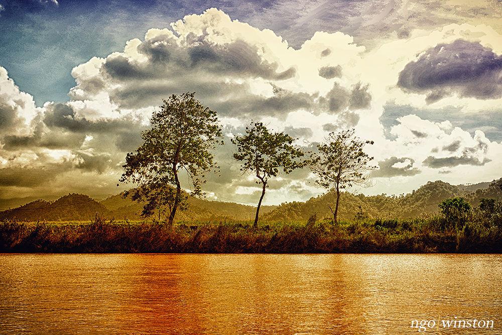 Nature by winston ngo