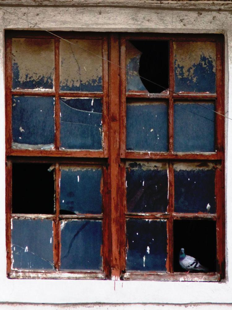 Window by Mustafa YORULMAZ