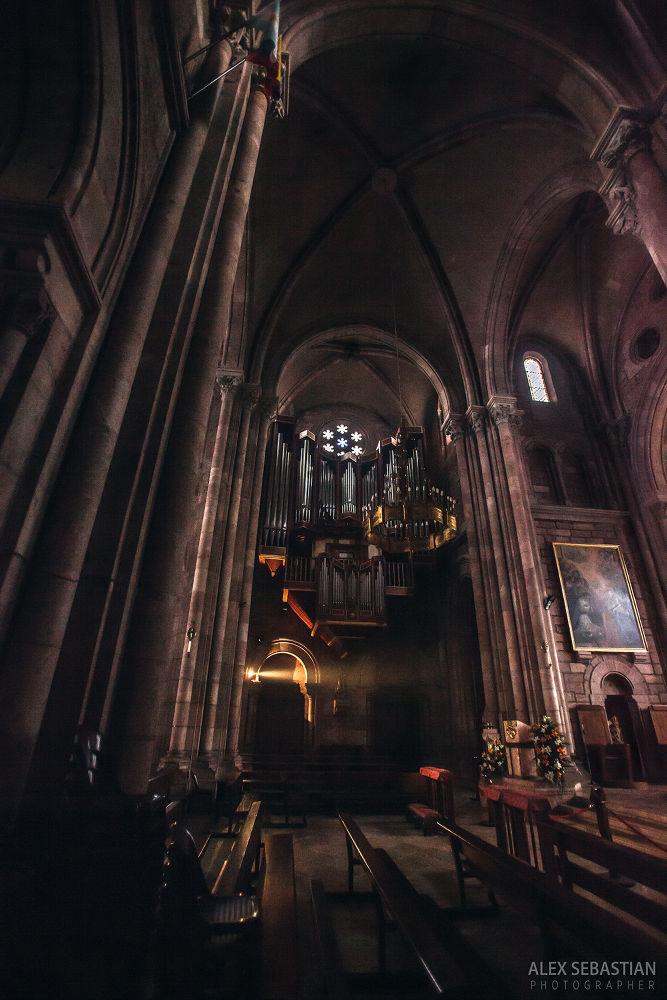 Basílica de Covadonga  by Alex Sebastian