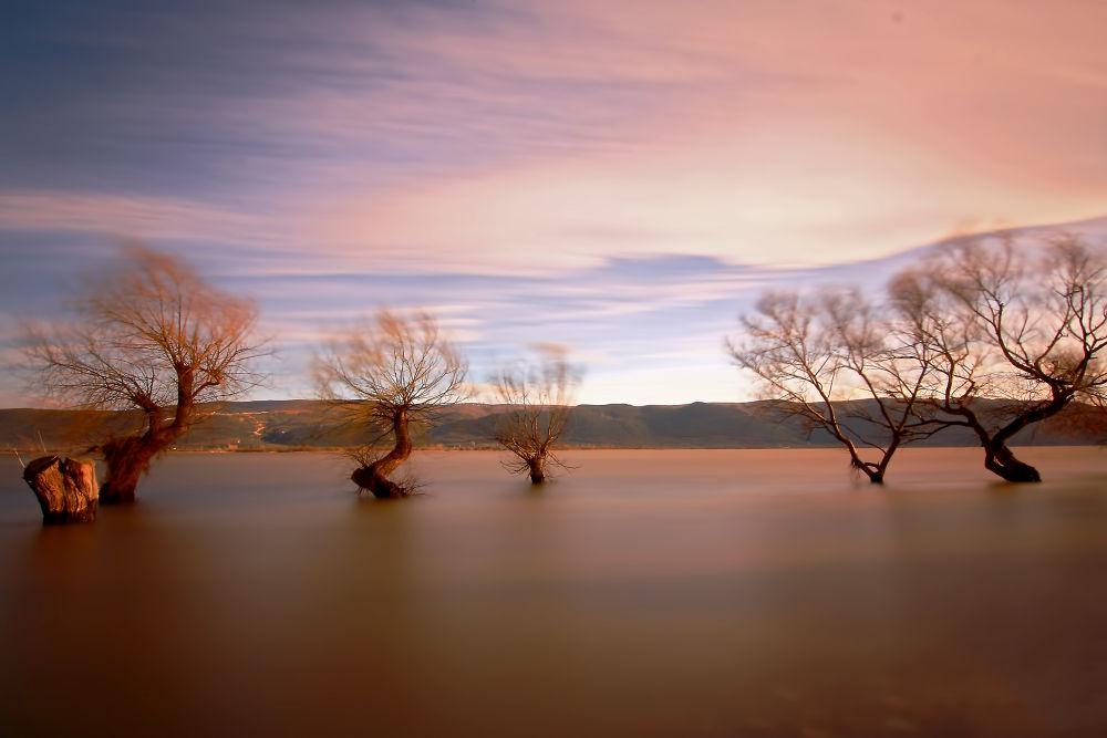 gölyazı by bulentterzi5