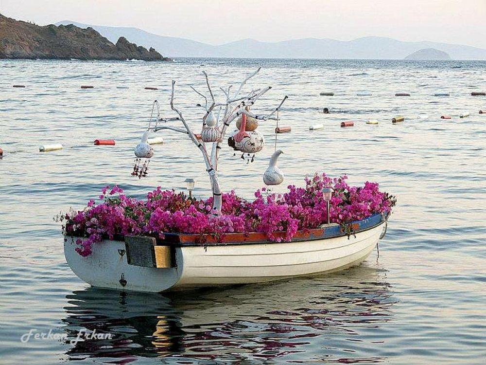 Love   Boat  from Gümüşlük-  Bodrum by ferkanerkan