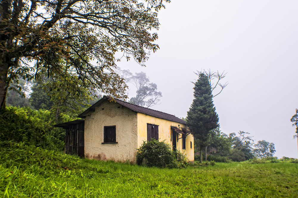 casa fog  by alpBalint