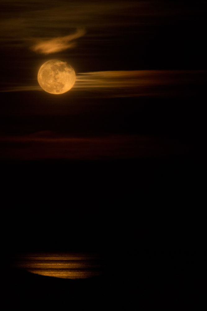 MOON by MrBrugolani