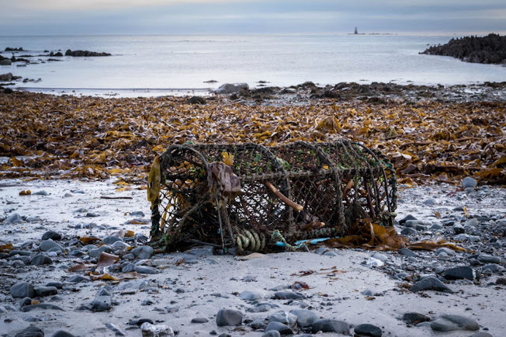 Washed up by clarkeanderson1957