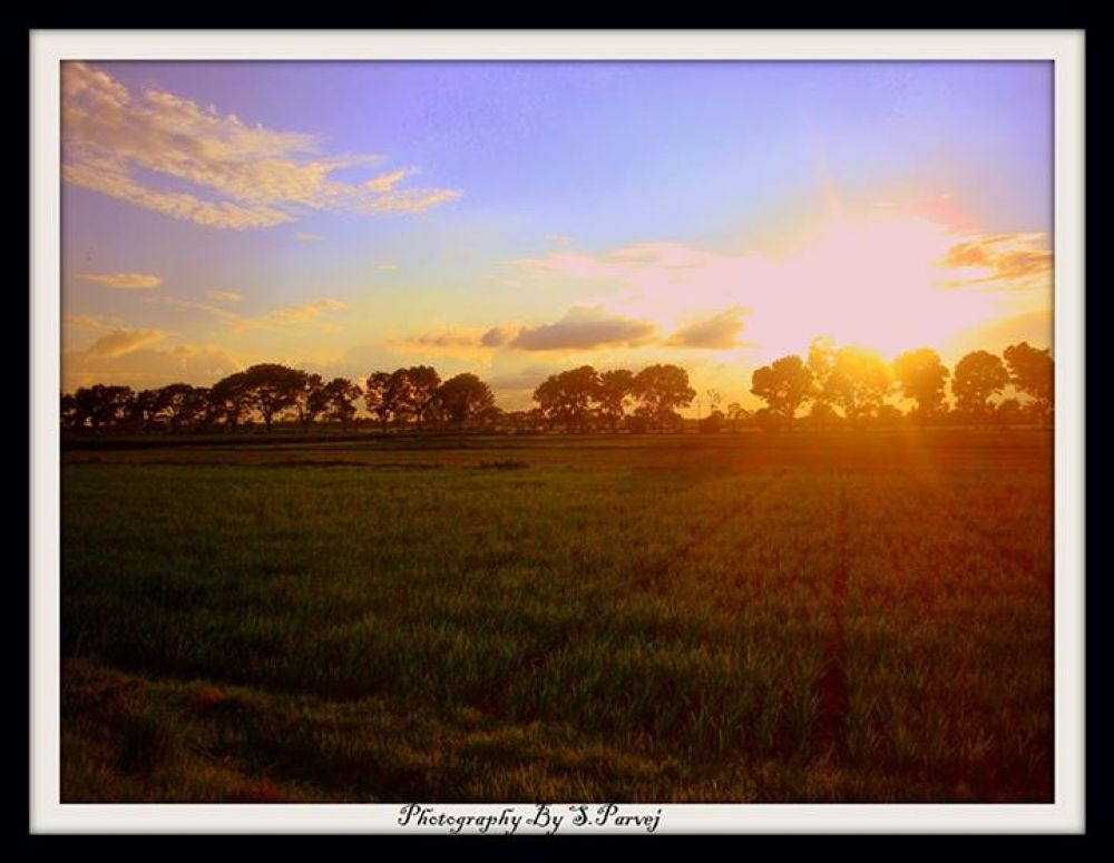 Beautiful Bangladesh !!!  by Salim Parvej