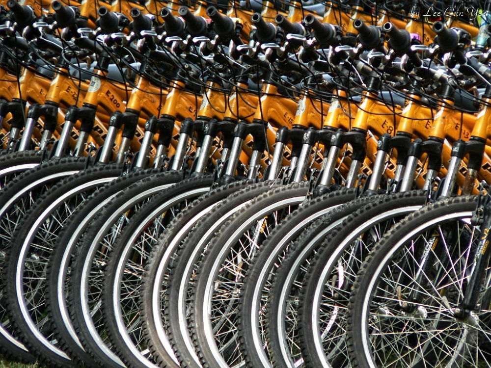 Bicycles by Chinyee