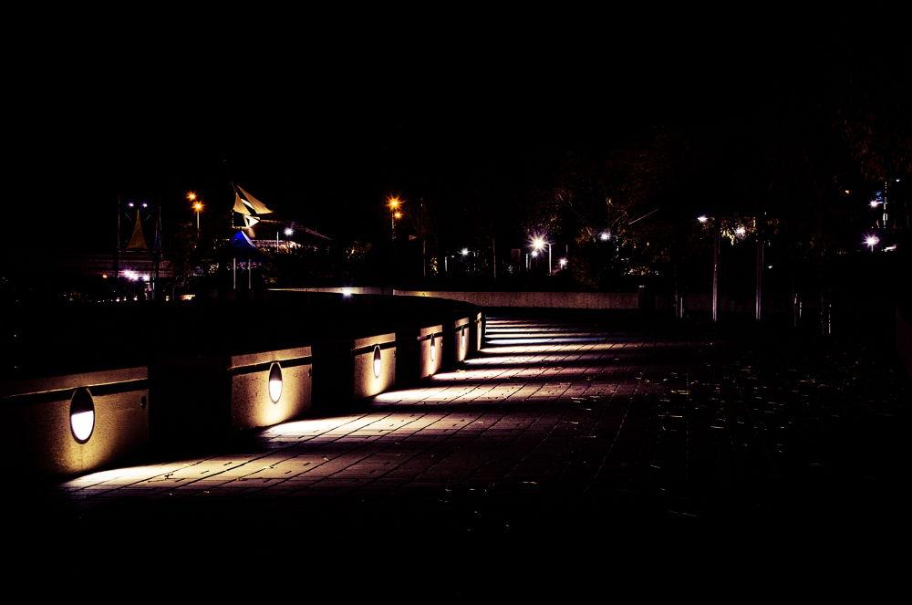 Night Walk by dao764