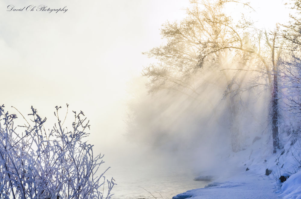 Water fog by the river bank by dao764