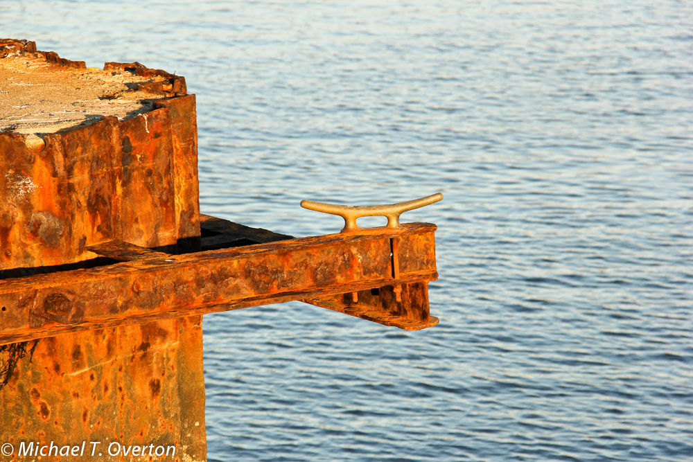 Rust never sleeps by Michael T. Overton