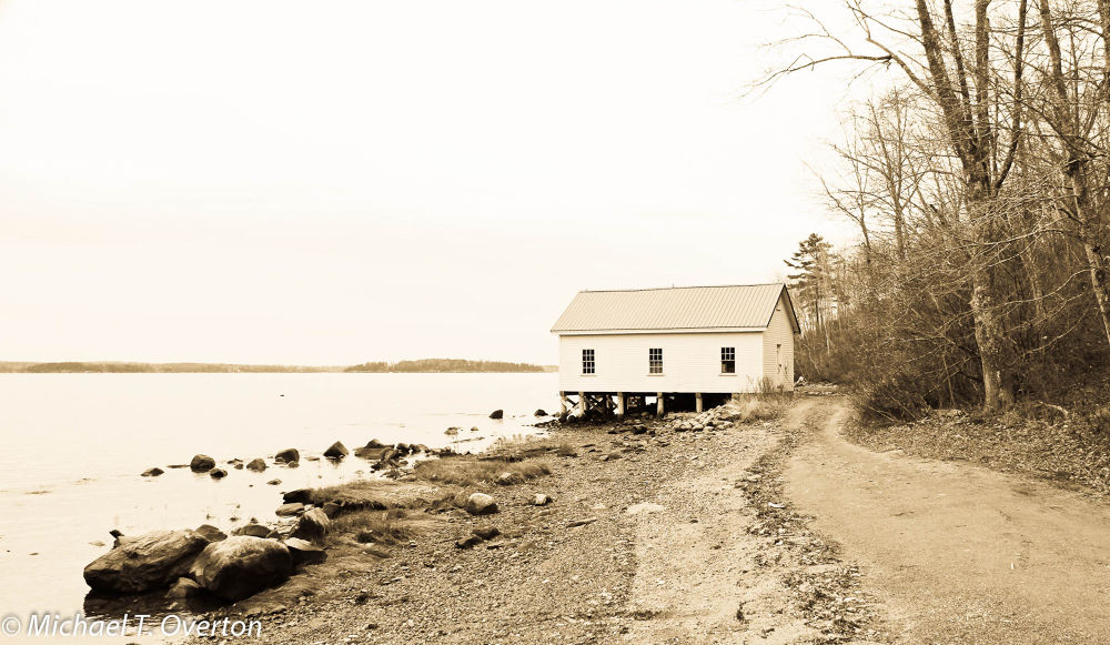 Saturday Cove by Michael T. Overton
