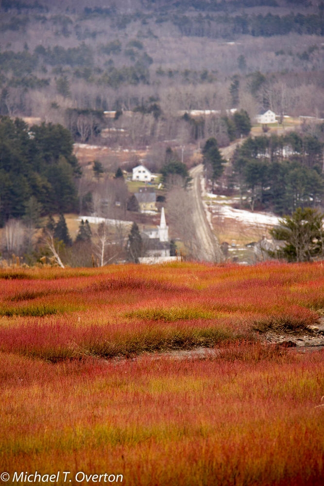 Appleton village from the Appleton Ridge. Color on a gray day. by Michael T. Overton